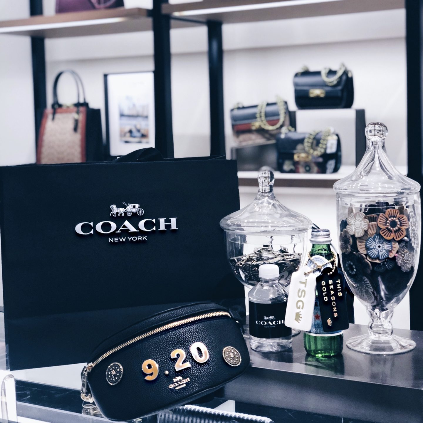 COACH Handbag event