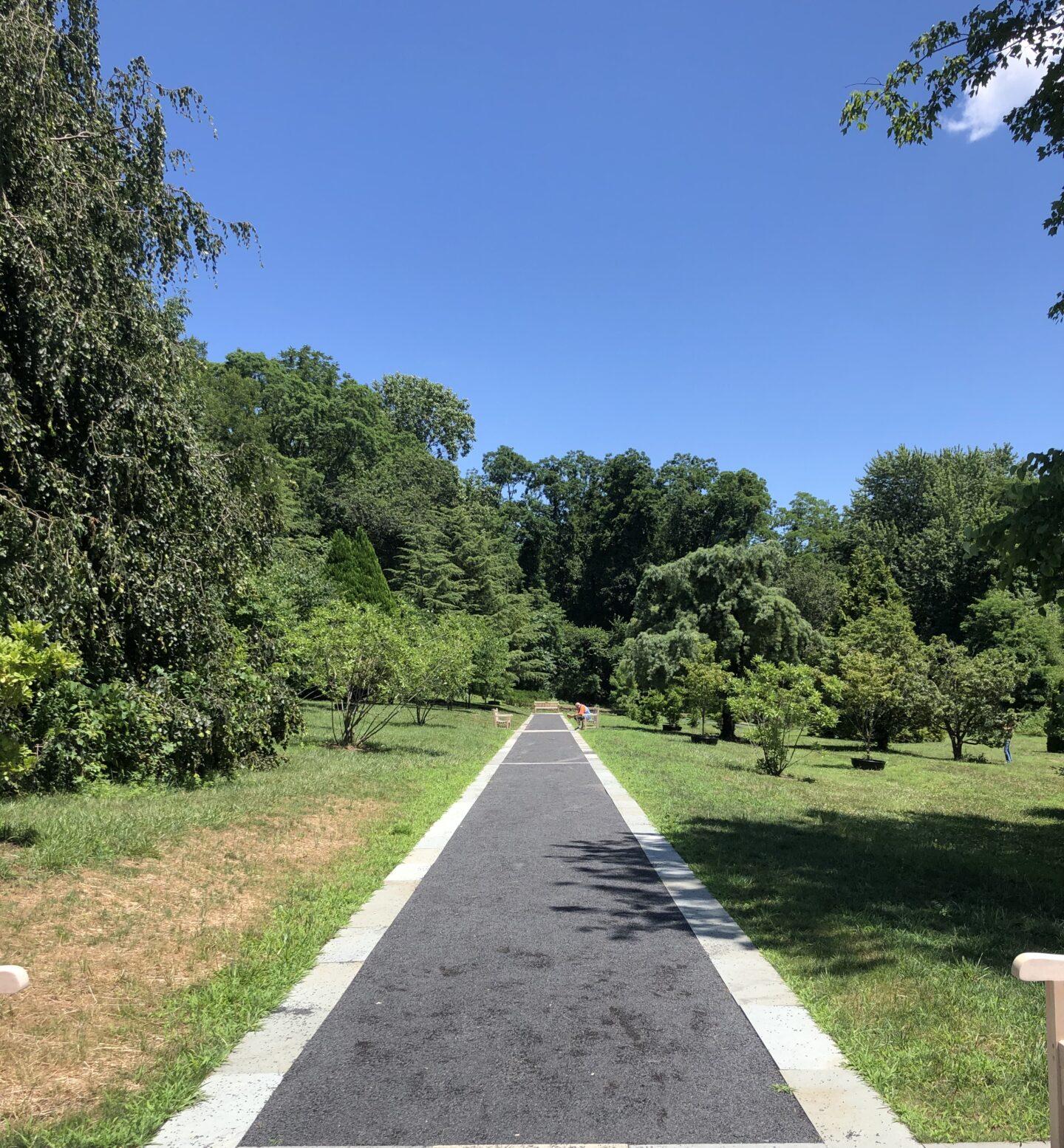 long path in garden