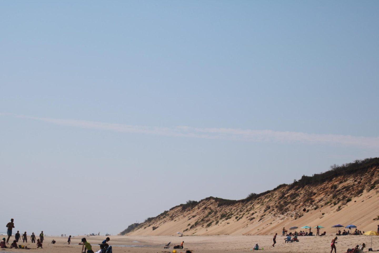 This Season's Gold // Cahoon Hallow Beach Stories
