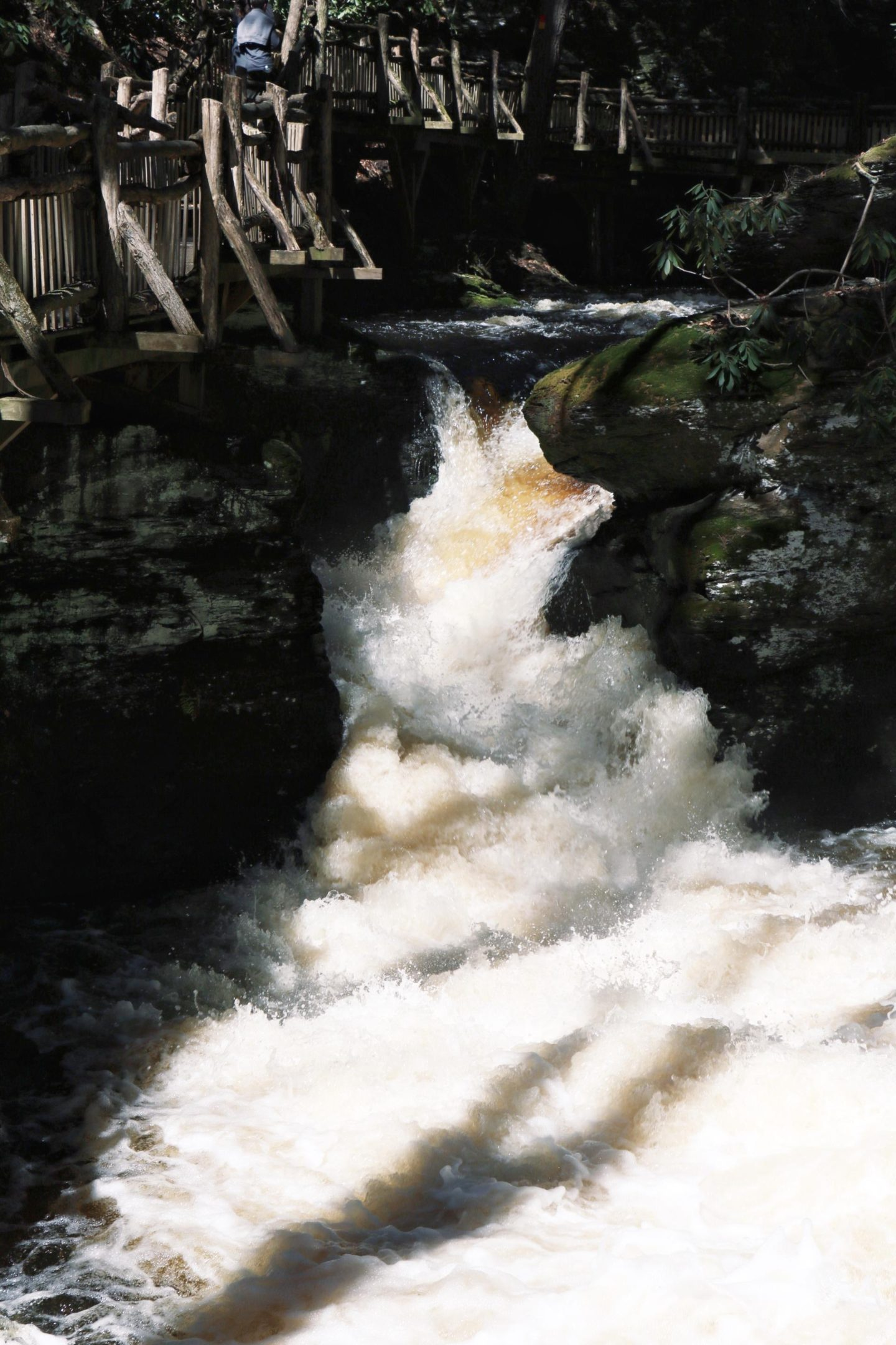 day trip to bushkill falls